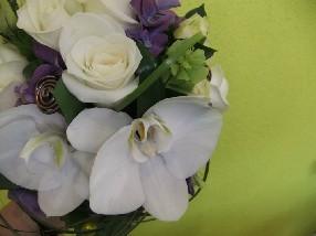 Tendance's Fleurs Viry