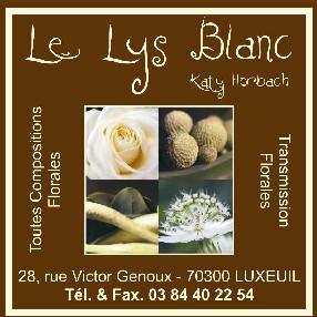 Le Lys Blanc Luxeuil les Bains